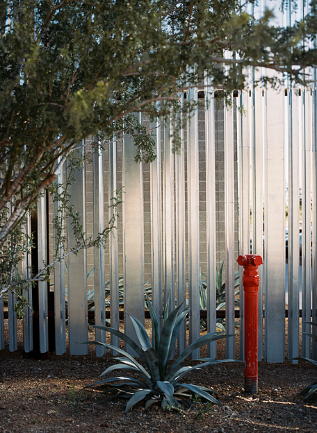 c_g_will_bruder_agave-library_da_03